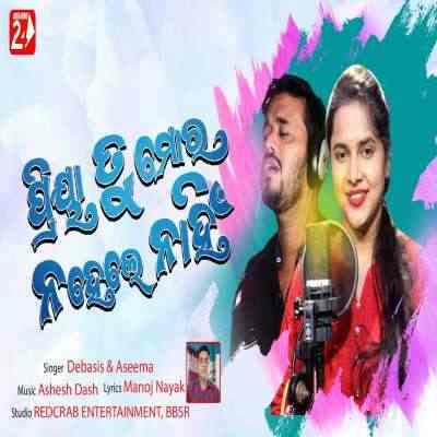 Priya Tu Mora Na Hele Nahi - Sad Song