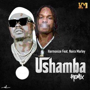 Harmonize – Ushamba ( Remix ) ft . Naira Marley