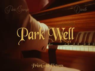 [VIDEO] Tiwa Savage – Park Well ft . Davido
