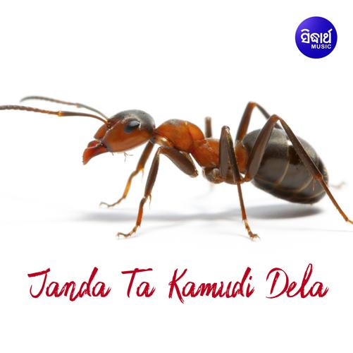 Tumo Ku Mu Bhuli Jebi (Kumar Bapi)