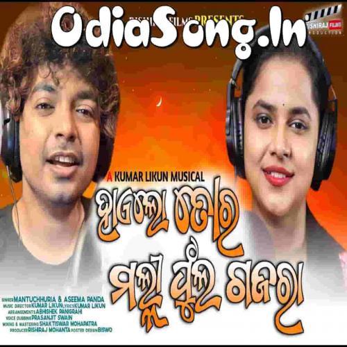 Haelo Tora Malli Phula Gajara (Mantu Chhuria, Asima Panda)