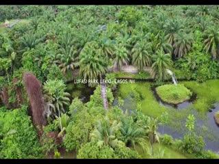 [Video] Endless Joy – Better Ft Wiz Ofuasia